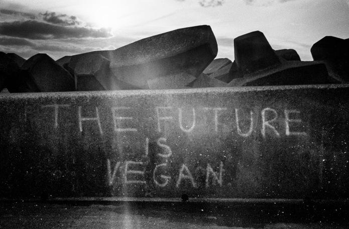 pier-vegan