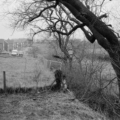 Elwick Rise, Hartlepool